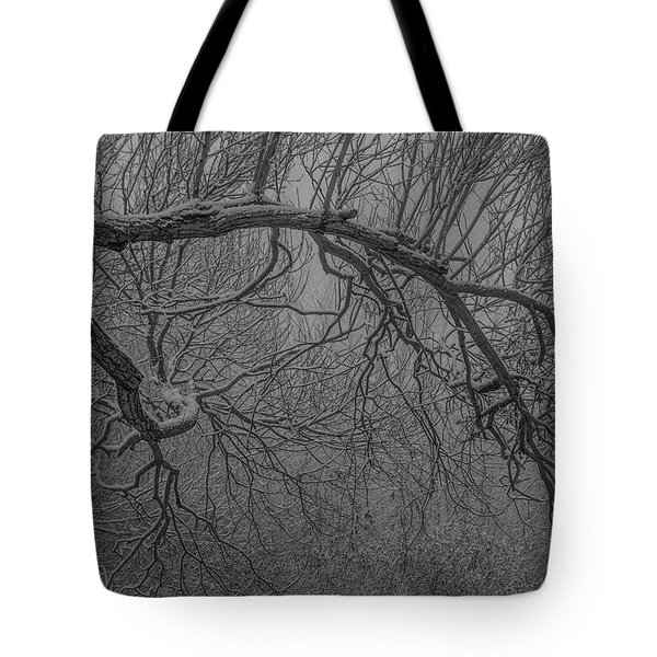 Wintery Tree Tote Bag