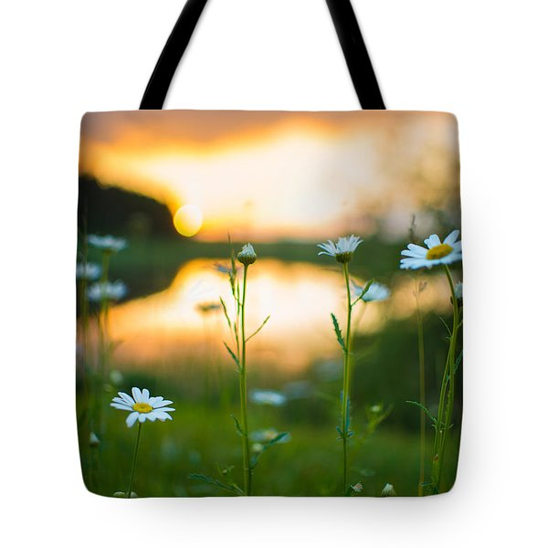 Wisconsin Daisies At Sunset Tote Bag