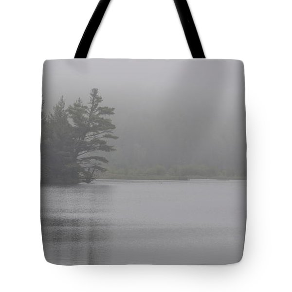 Wisconsin In Grey And Green Tote Bag