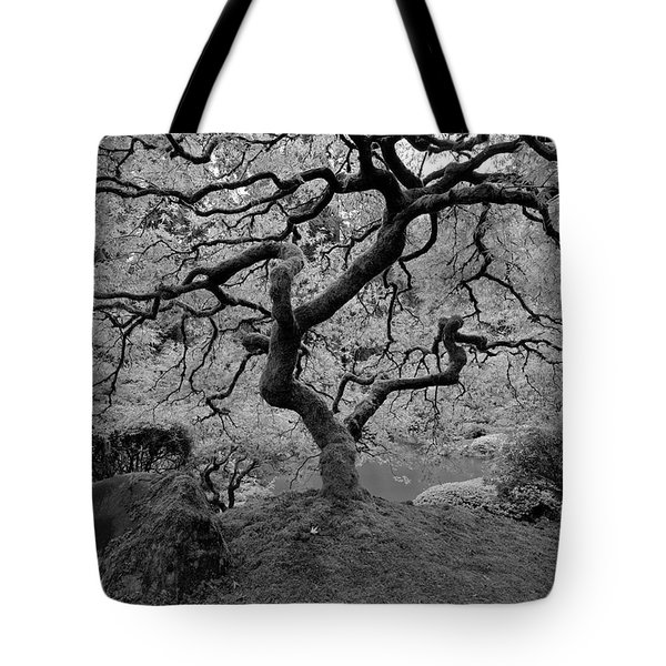Tote Bag featuring the photograph Wisdom Bw by Jonathan Davison