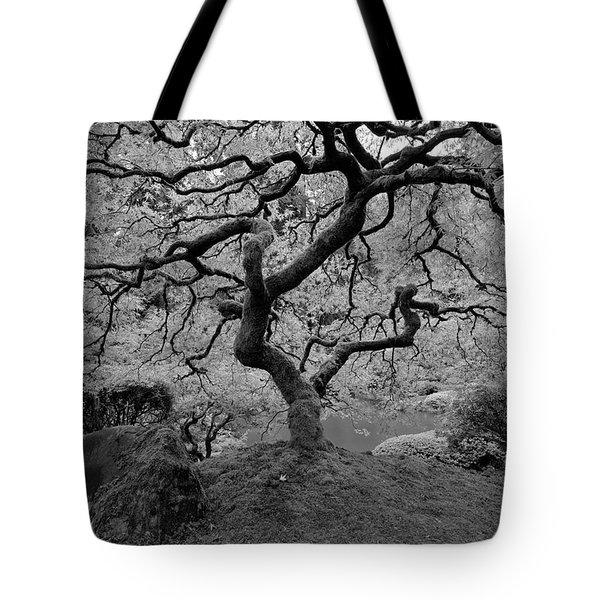 Wisdom Bw Tote Bag by Jonathan Davison