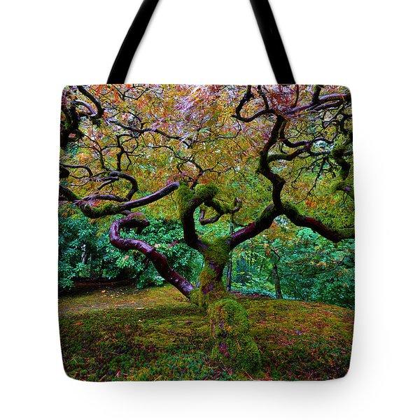 Tote Bag featuring the photograph Wisdom Tree by Jonathan Davison
