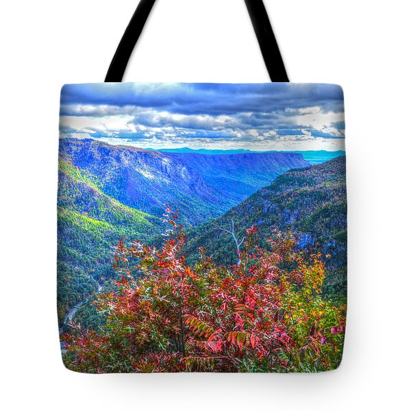 Wiseman's View Tote Bag