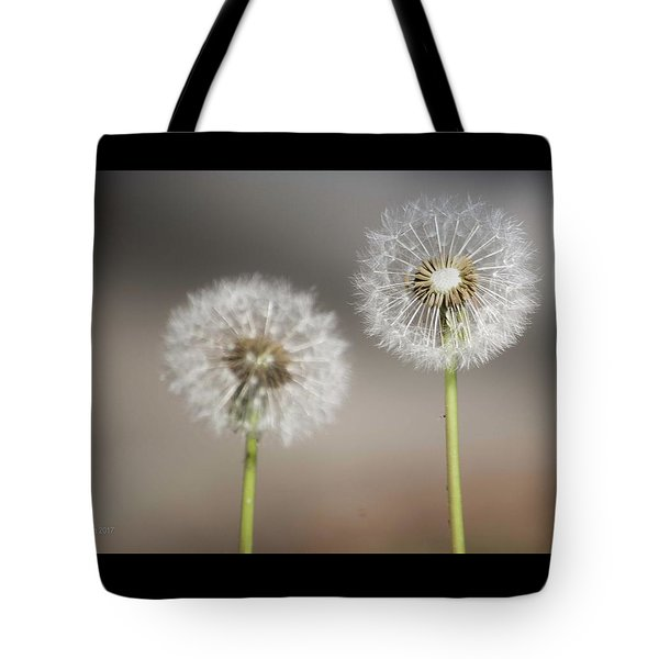 Tote Bag featuring the photograph Wish On Me by Lora Lee Chapman