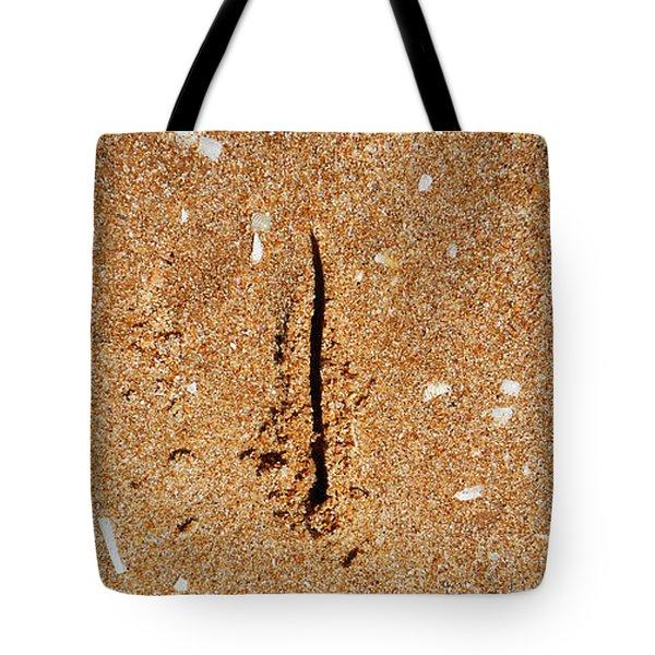 Wish You Were Here Tote Bag by Charles Stuart