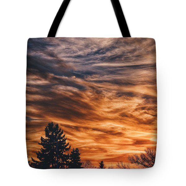 Tote Bag featuring the photograph Wisp by Nikki McInnes