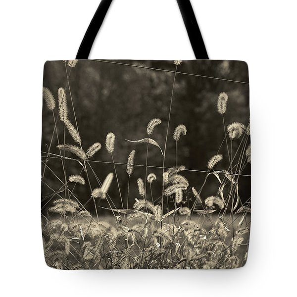 Wispy Tote Bag by Joanne Coyle