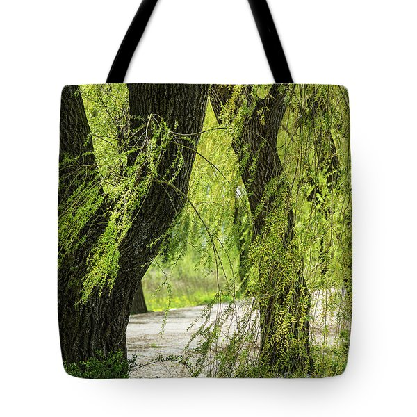 Wispy Willows-2 Tote Bag
