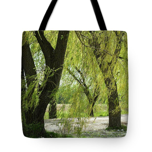 Wispy Willows-1 Tote Bag