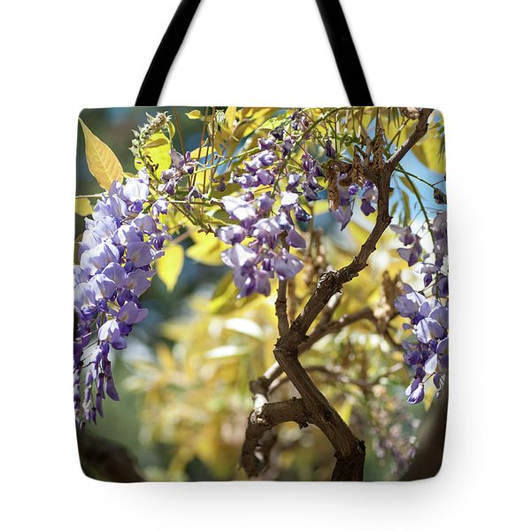 Tote Bag featuring the photograph Wisteria Branches by Jenny Rainbow