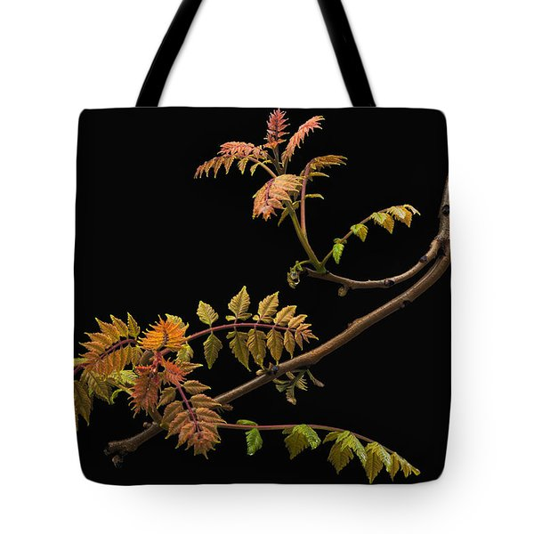 Tote Bag featuring the photograph Wisteria Colors by Ken Barrett