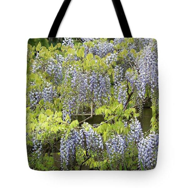 Wisteria Floribunda Multijuga Tote Bag