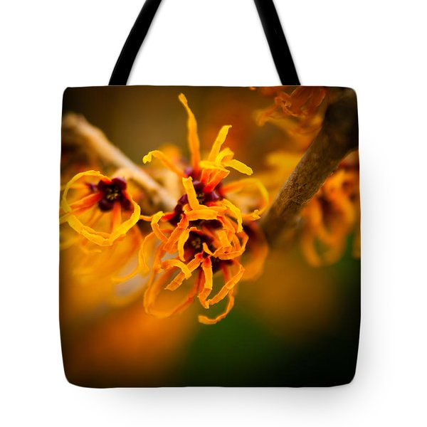 Tote Bag featuring the photograph Witch Hazel by Erin Kohlenberg