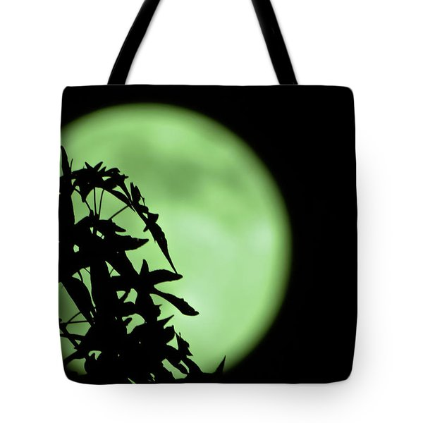 Tote Bag featuring the photograph Witching Hour by DigiArt Diaries by Vicky B Fuller
