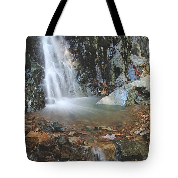 With Heart And Soul Tote Bag by Laurie Search
