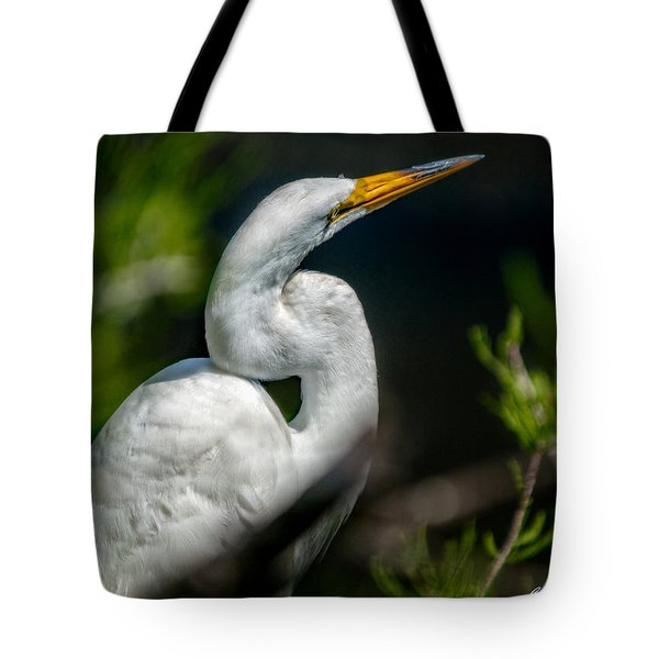 Tote Bag featuring the photograph White Egret 2 by Christopher Holmes