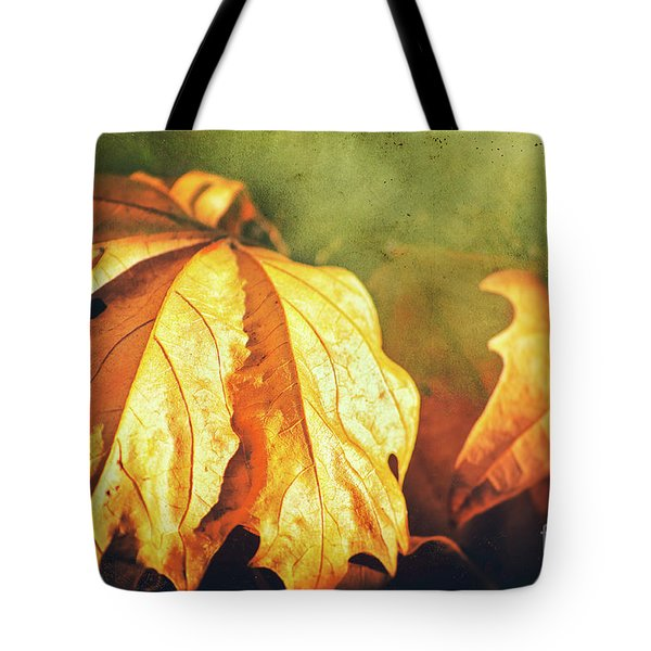 Tote Bag featuring the photograph Withered Leaves by Silvia Ganora