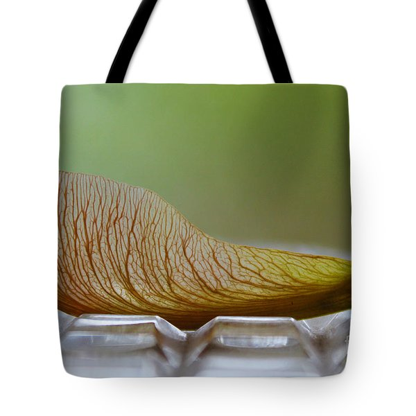 Within Lies A Tree Tote Bag