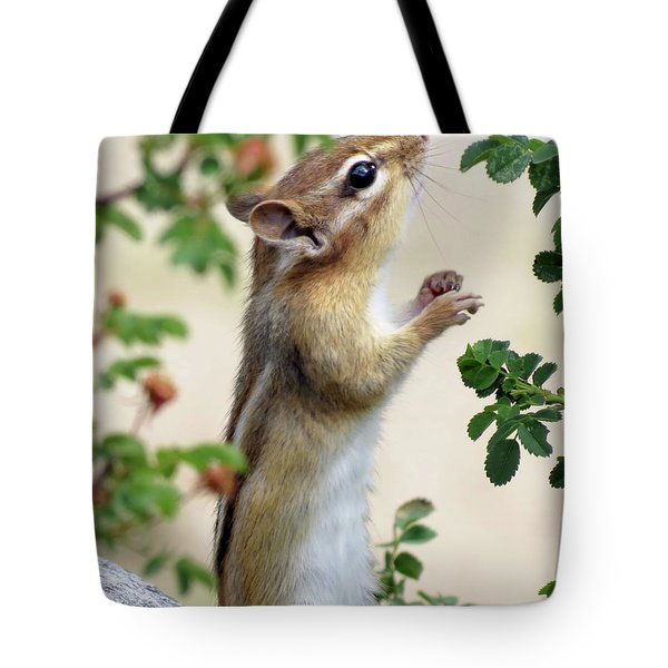 Within Reach - Chipmunk Tote Bag by MTBobbins Photography