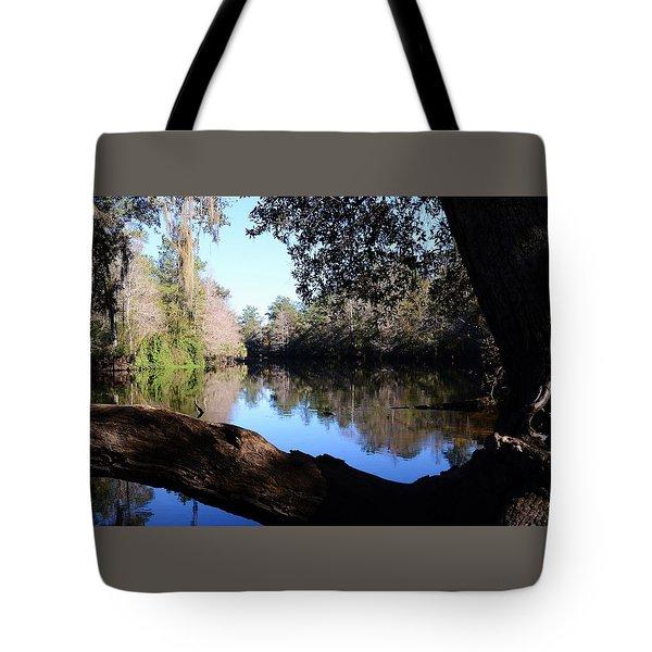 Withlacoochee Overlook Tote Bag by Warren Thompson