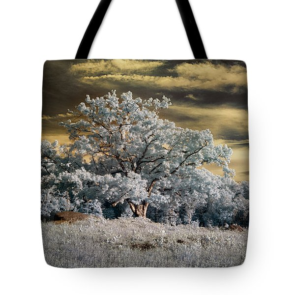 Witness To History Tote Bag