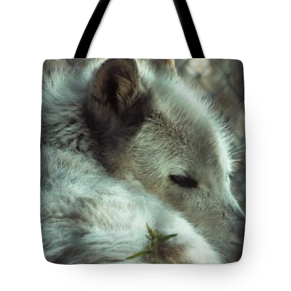 Wolf At Rest Tote Bag