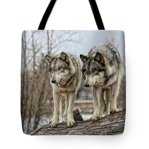 Tote Bag featuring the photograph Wolf Pair by Shari Jardina