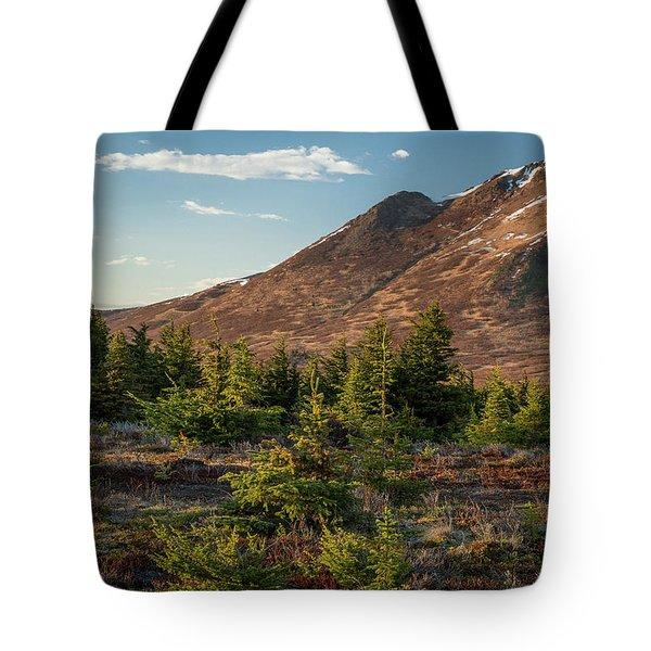 Wolverine Mt Near Sunset Tote Bag