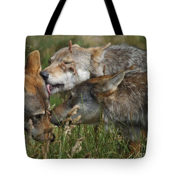 Tote Bag featuring the photograph Wolf Pack  - The Greeting by Phil Banks