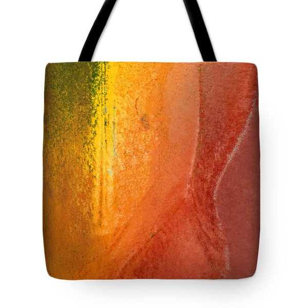 Tote Bag featuring the digital art Woman In Window Light by Haleh Mahbod