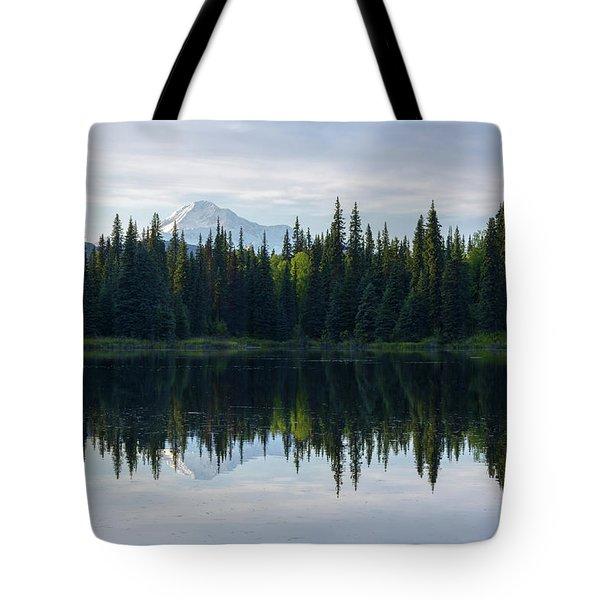 Wonder Tote Bag