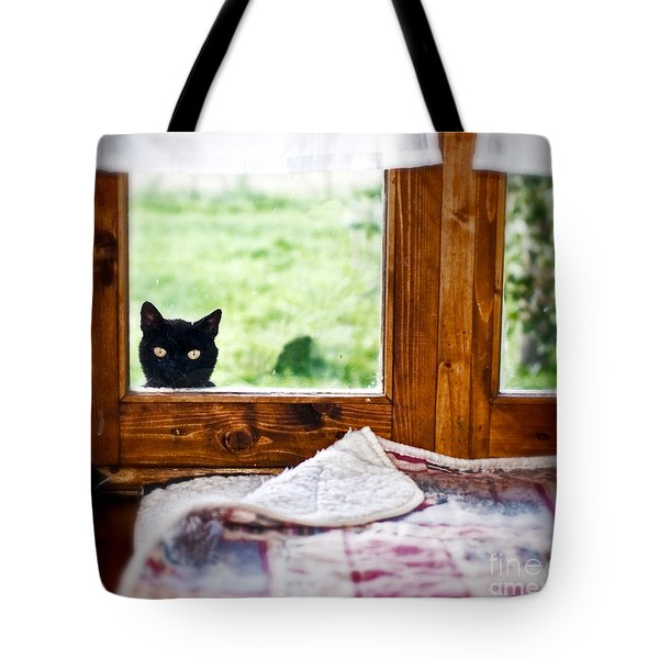 Wondering What's She... Better Investigate Tote Bag by Silvia Ganora
