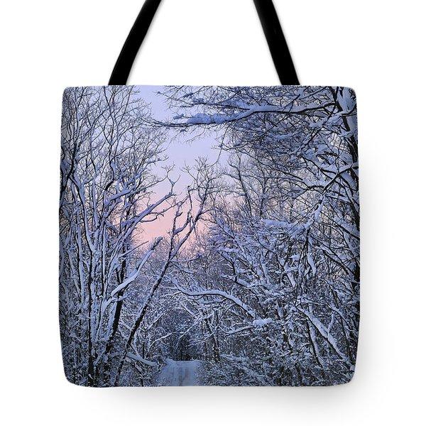 Wonderland Road Tote Bag