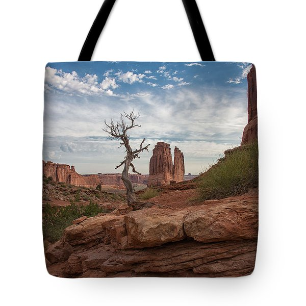Wonders Along Park Avenue Tote Bag