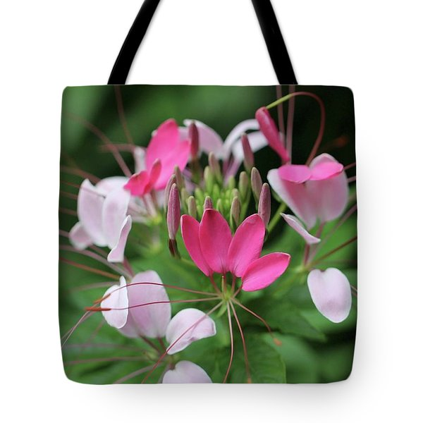 Tote Bag featuring the photograph Wonders Of Cleome by Deborah  Crew-Johnson