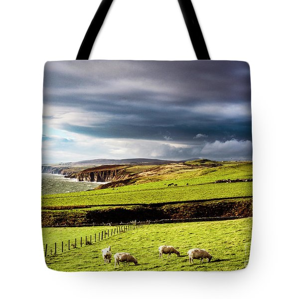 Tote Bag featuring the photograph Wonders Of Thrumster by Anthony Baatz