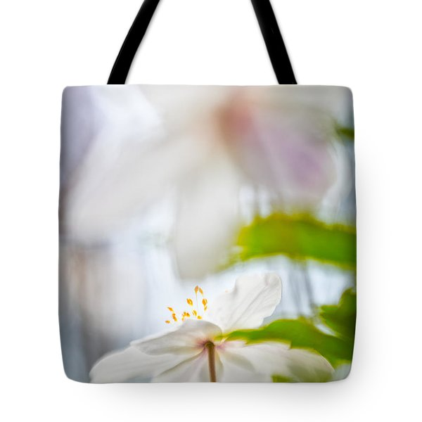 Wood Anemone Spring Wild Flower Abstract Tote Bag