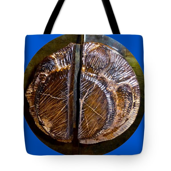 Tote Bag featuring the photograph Wood Carved Fossil by Francesca Mackenney