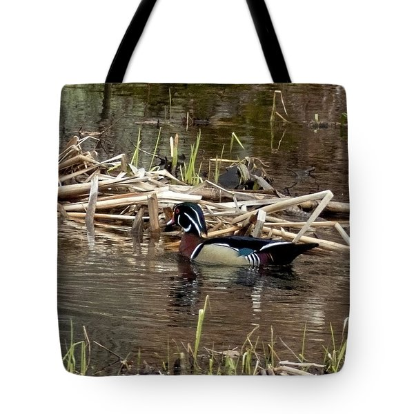 Tote Bag featuring the photograph Wood Duck  by Betty Pauwels
