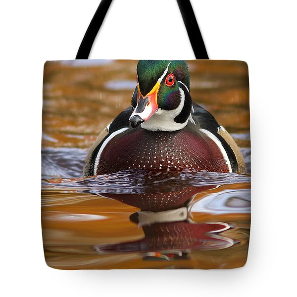 Wood-duck-male On The Golden Light Tote Bag by Mircea Costina Photography