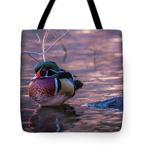 Tote Bag featuring the photograph Wood Duck Resting by Bryan Carter