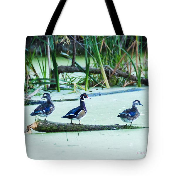 Tote Bag featuring the photograph Wood Ducks All Grown Up by Edward Peterson