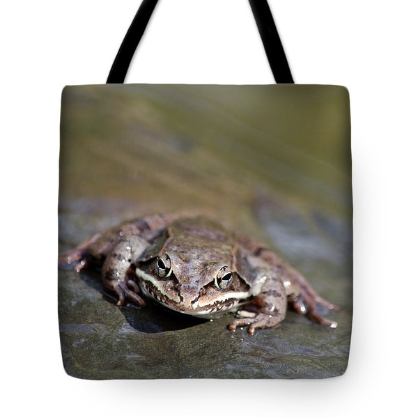Tote Bag featuring the photograph Wood Frog Close Up by Christina Rollo