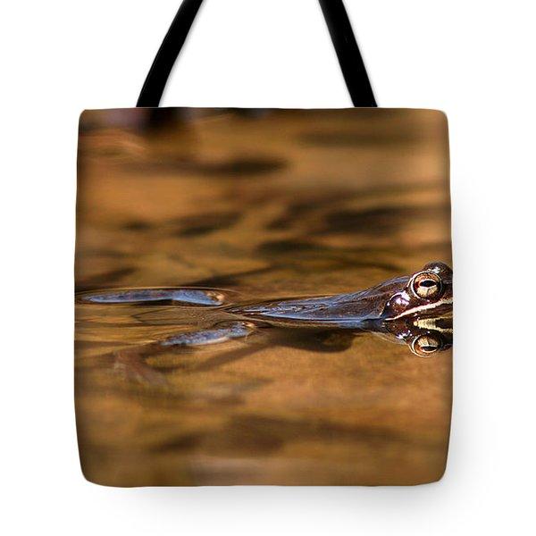 Wood Frog Reflecting On Golden Pond Tote Bag
