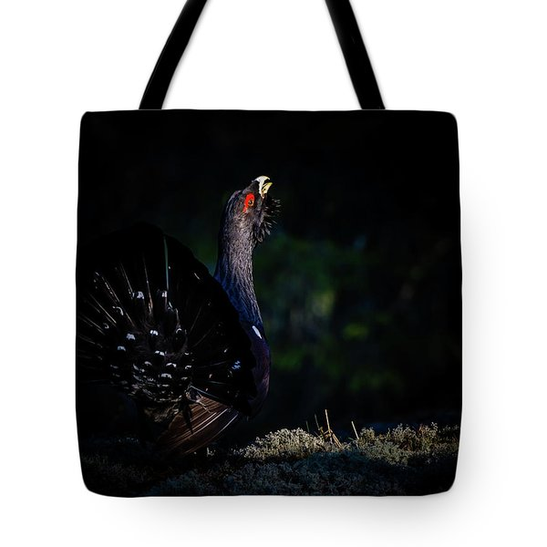 Wood Grouse's Sunbeam Tote Bag by Torbjorn Swenelius