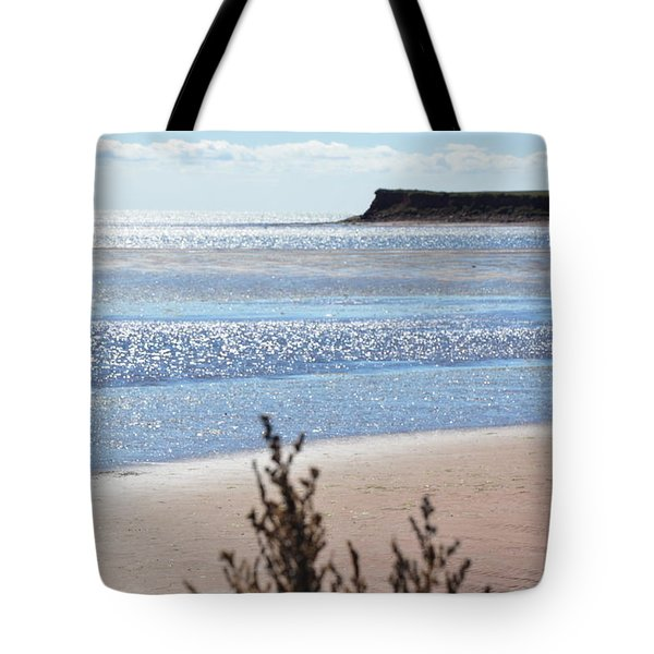 Tote Bag featuring the photograph Wood Islands Beach by Kim Prowse