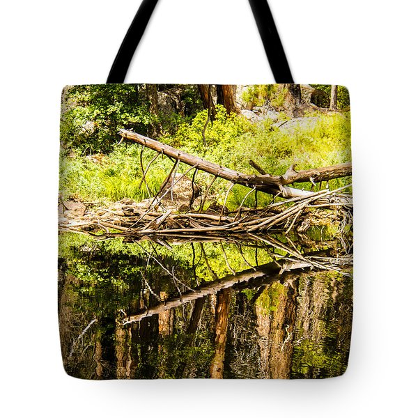 Wood Reflections Tote Bag by Brian Williamson