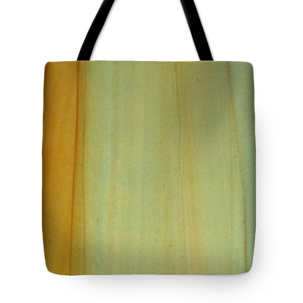 Wood Stain Tote Bag