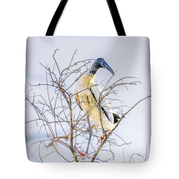Wood Stork Sitting In A Tree Tote Bag