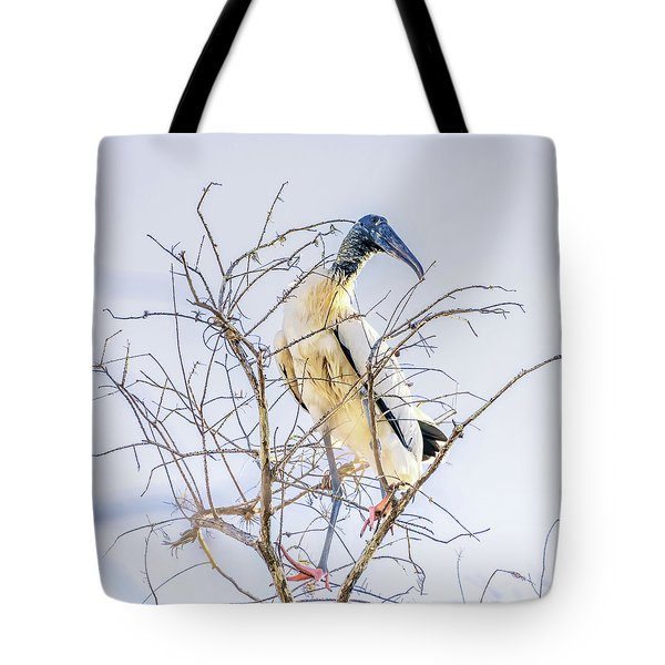 Wood Stork Sitting In A Tree Tote Bag